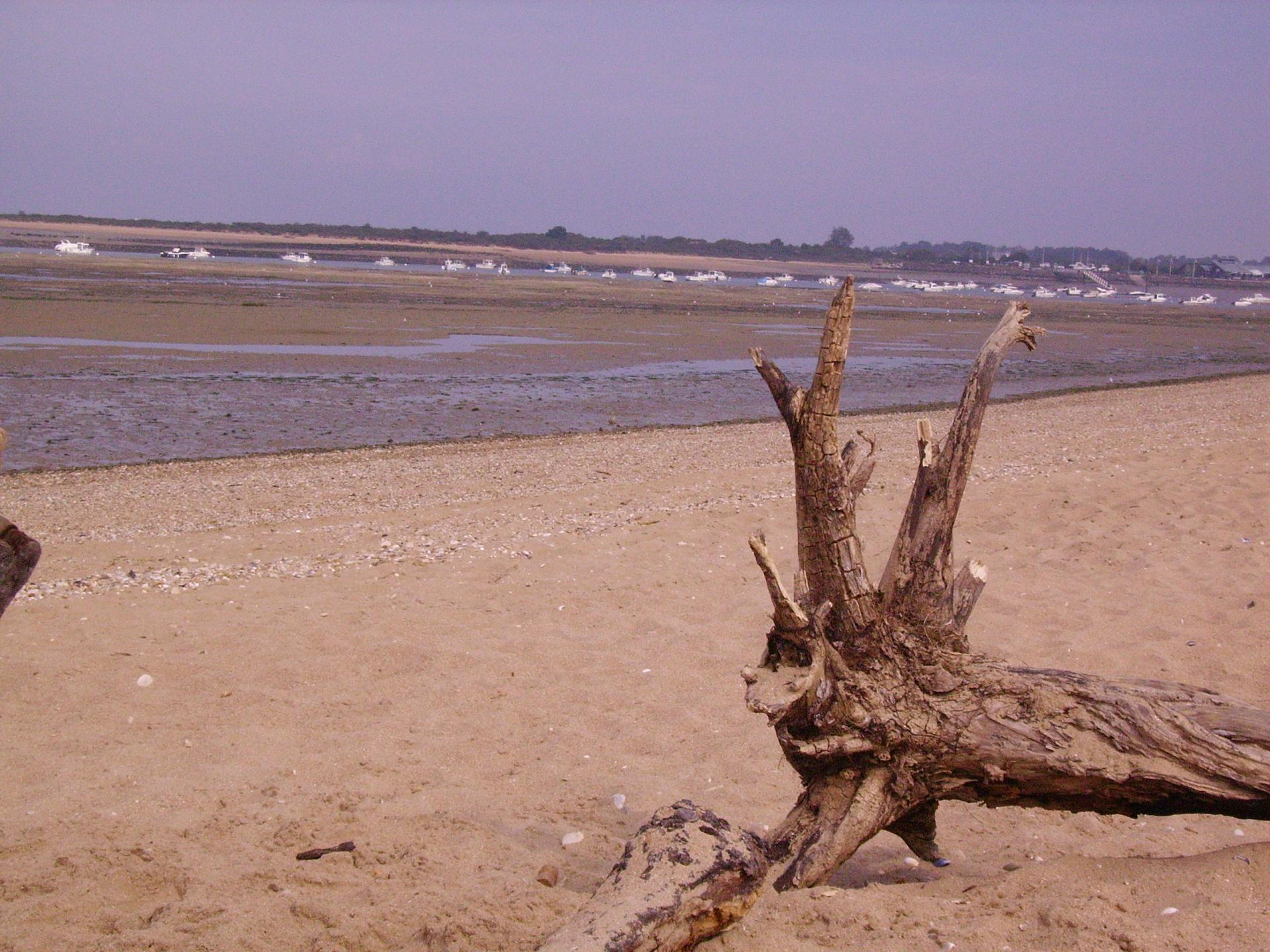 La baie de Sallenelles